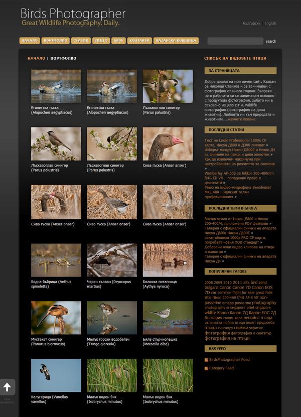 Birds Photographer